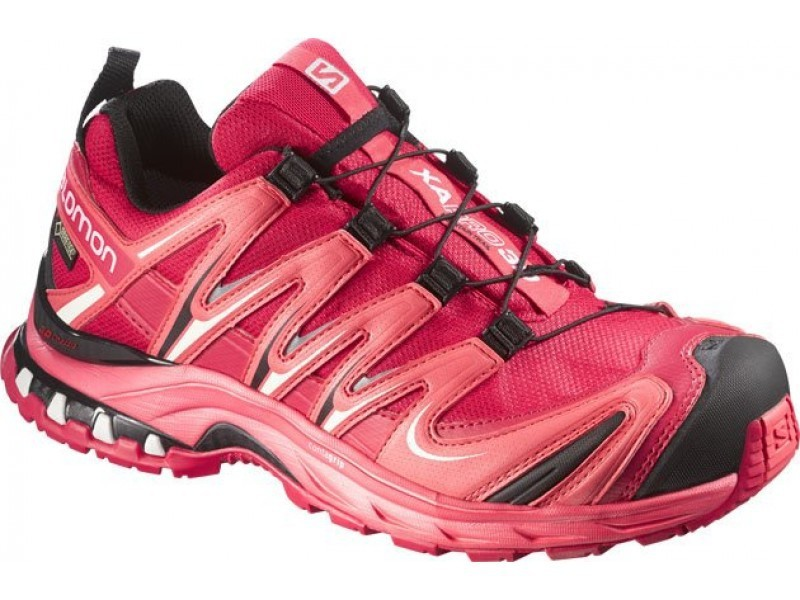 Topánky Salomon XA PRO 3D GTX ® W 375936